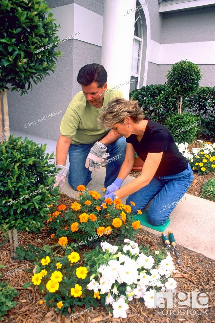 Stock Photo: Married Couple at Home Planting Flowers in Front of House.
