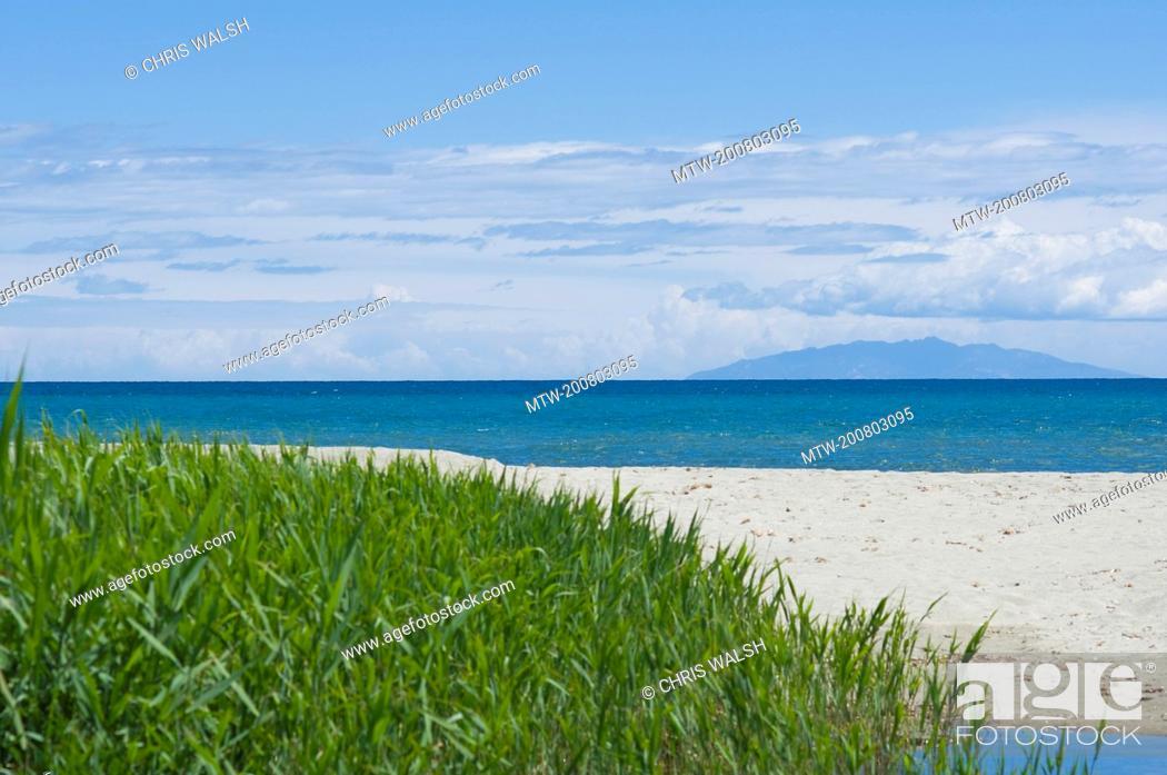 Imagen: Beach ocean turquoise bamboo grass island summer.