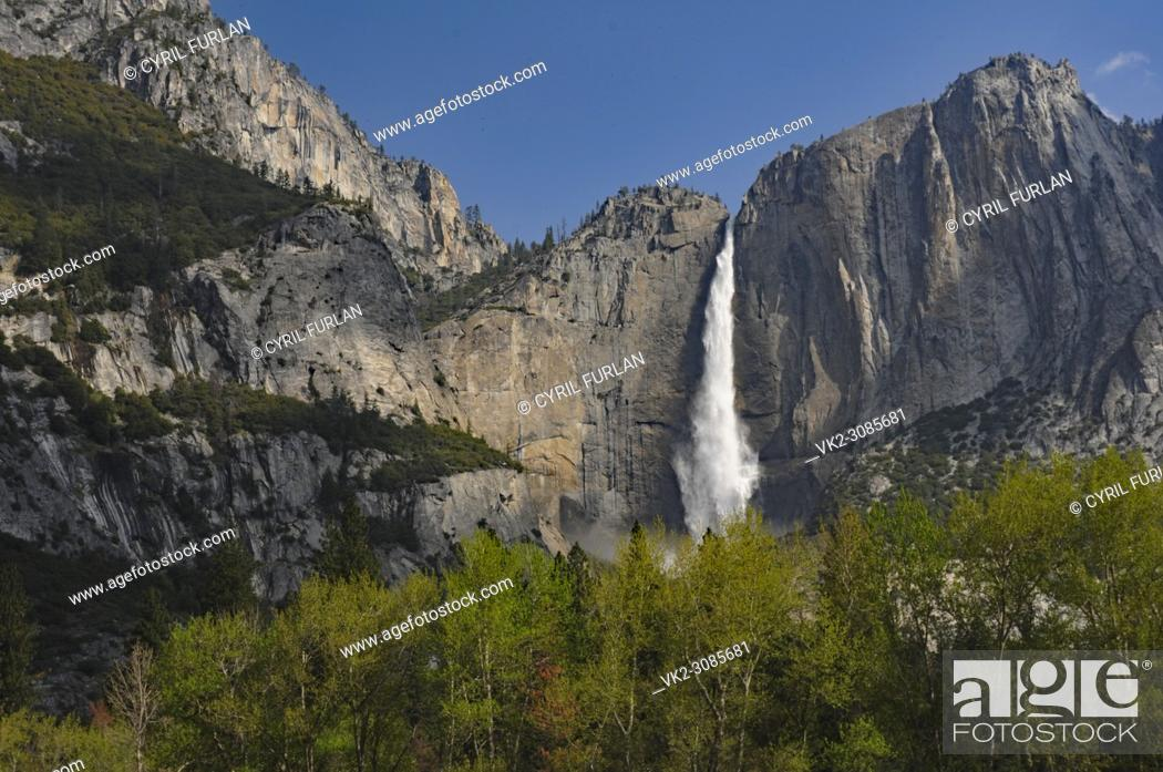 Stock Photo: Yosemite Falls, through the trees.