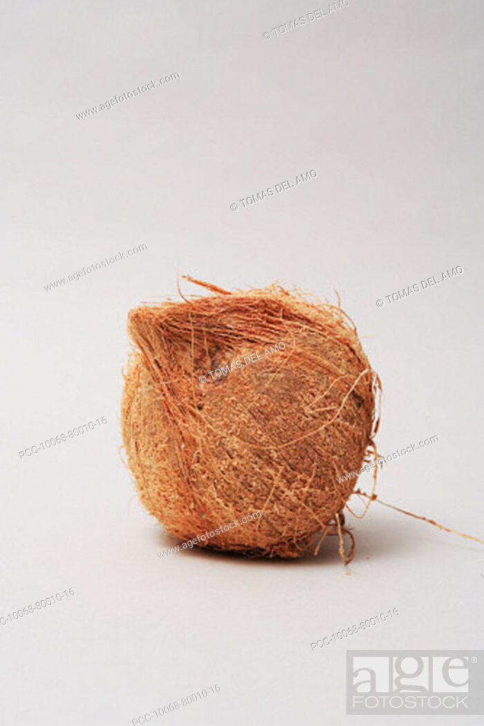 Stock Photo: Hairy coconut alone on white background.