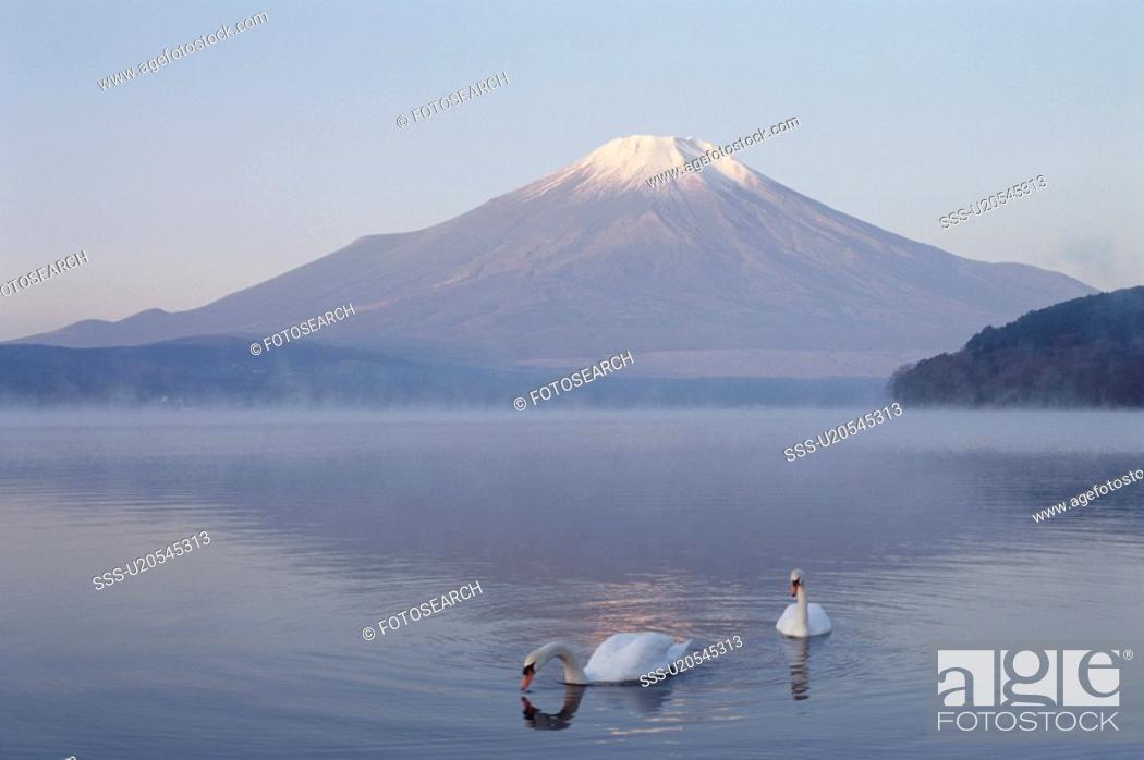 Stock Photo: Mt. Fuji And Lake Yamanaka.