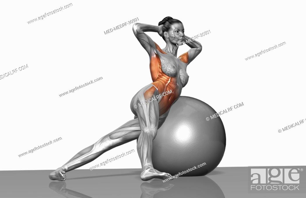 Stock Photo: Obliques exercise.