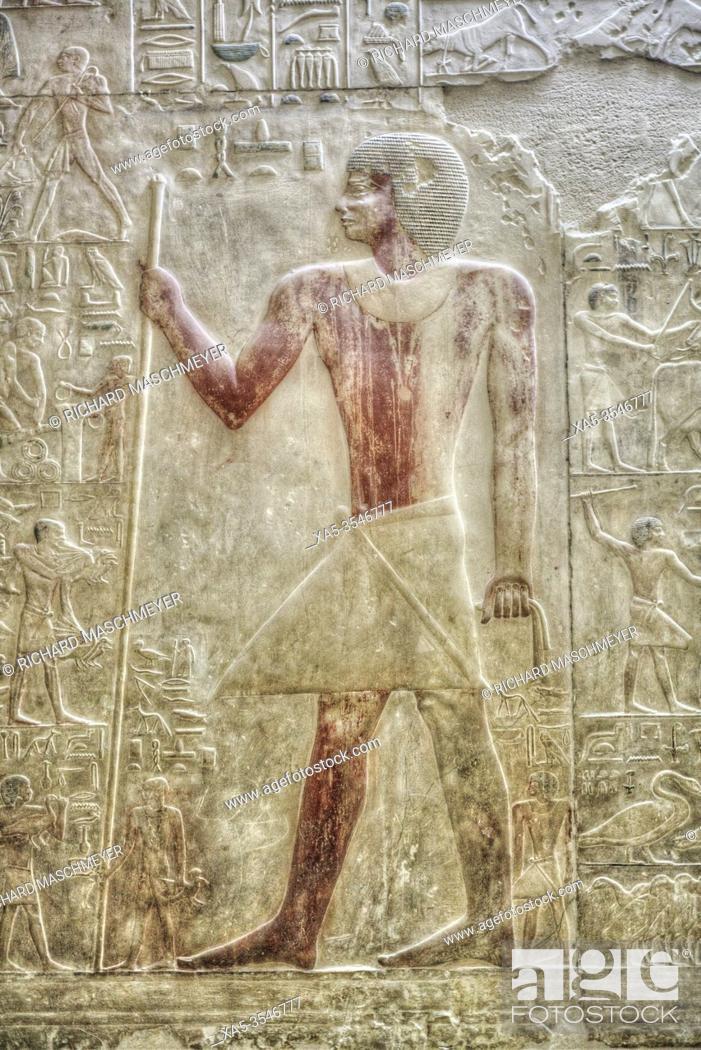 Photo de stock: Reliefs, Mastaba of Akhethotep, Necropolis of Saqqara, UNESCO World Heritage Site, Saqqara, Egypt.