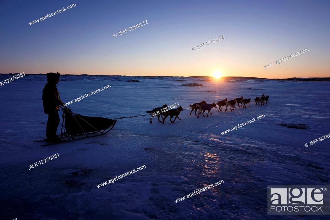 Imagen: Joar Leifseth Ulsom on the sea ice in front of Koyuk during the Iditarod Sled Dog Race 2014.