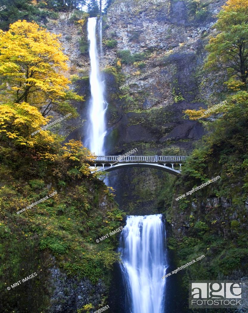 Imagen: Waterfall and Bridge in Autumn.