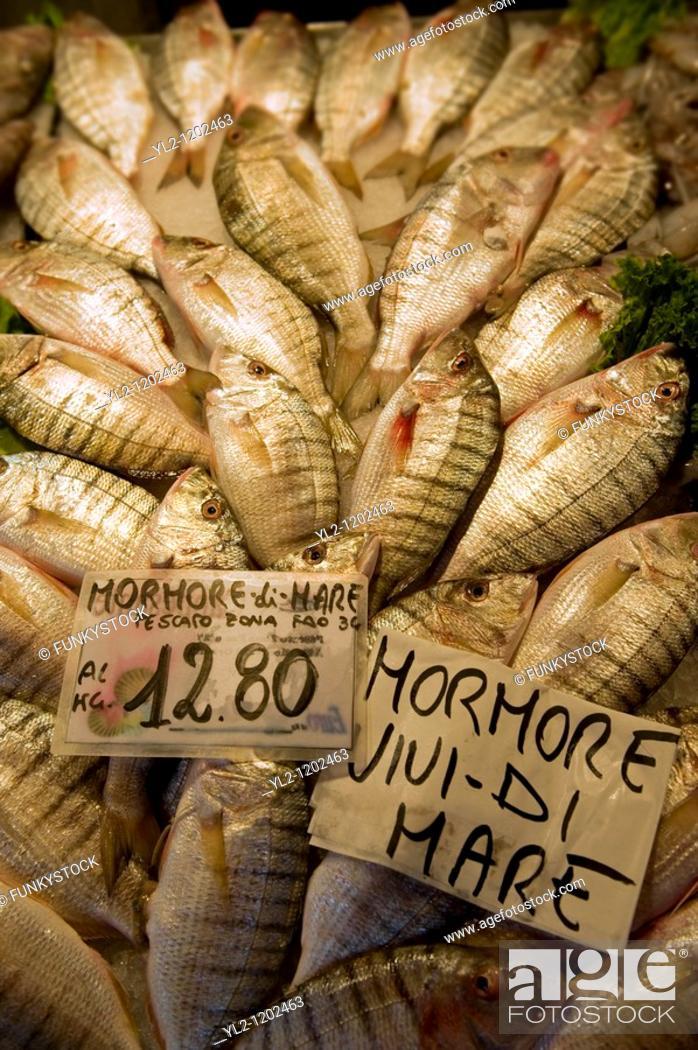 Stock Photo: Fresh Mohore fish - Rialto Fish Market - Venice Italy.