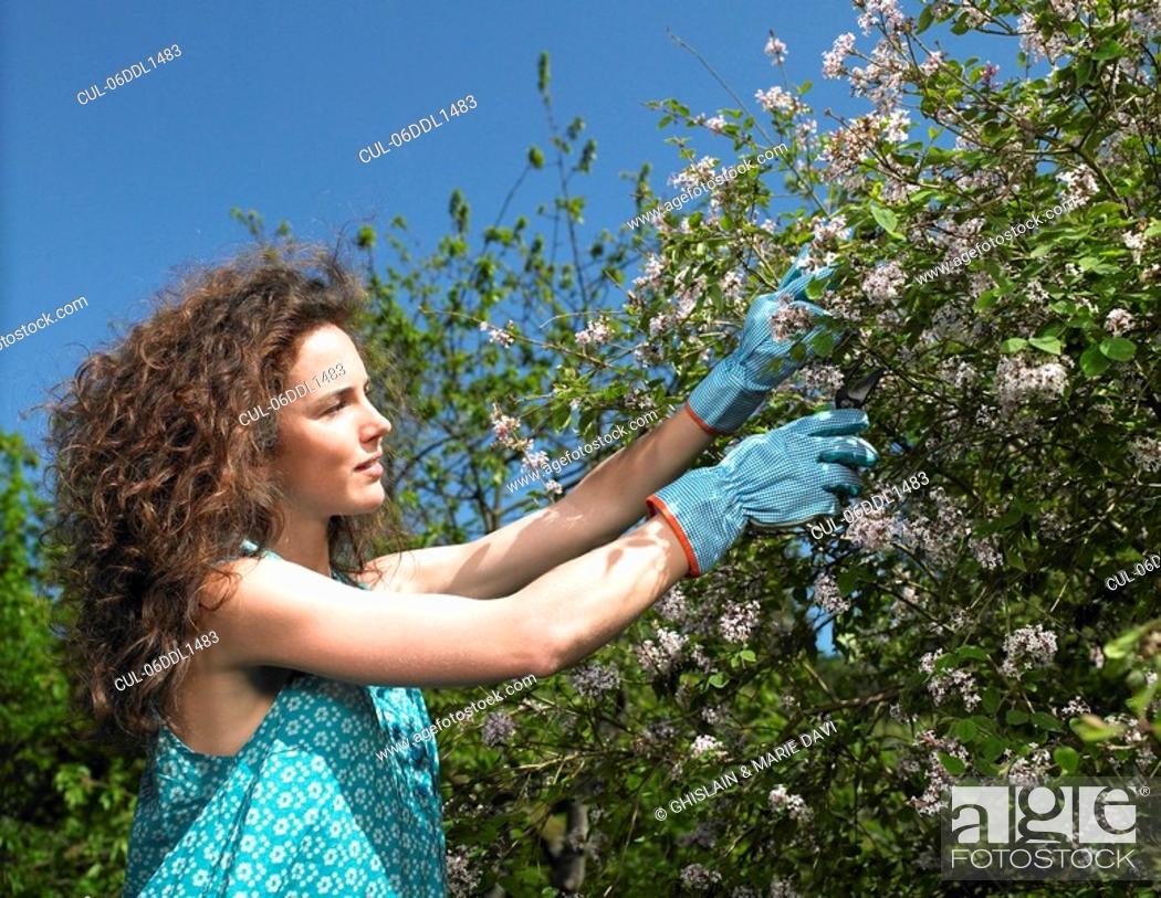 Stock Photo: Woman working in the garden.