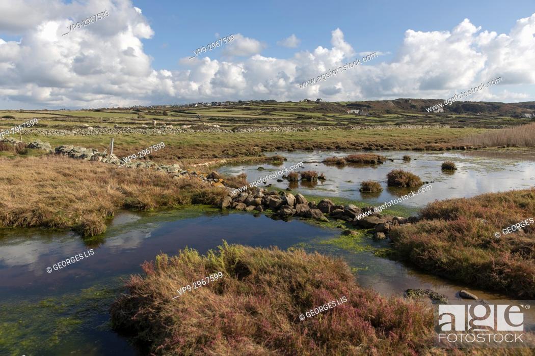 Imagen: Landscape in Cap de la Hague, Cotentin Peninsula, Normandy, France.