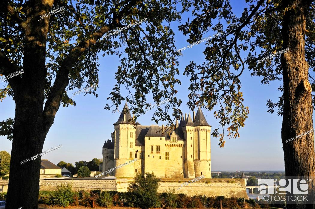 Stock Photo: France, Maine et loire, Loire Valley a World Heritage Site of UNESCO, Saumur, castle of Saumur along the Loire river.