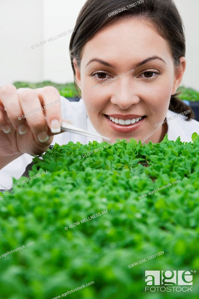 Imagen: Female scientist researching on plants in a laboratory.