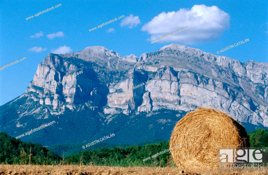 Stock Photo: Straw roll on field in summer with pre-Pyrenees mountains in background. Aragón, Spain.