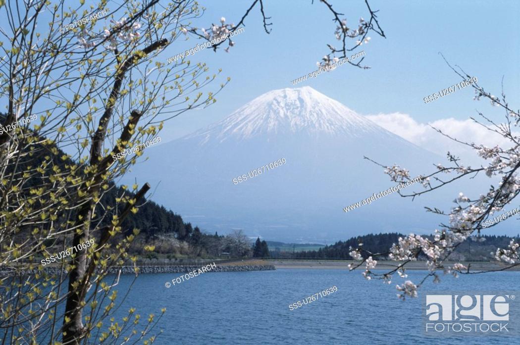 Stock Photo: Lake Tanuki And Mt. Fuji.