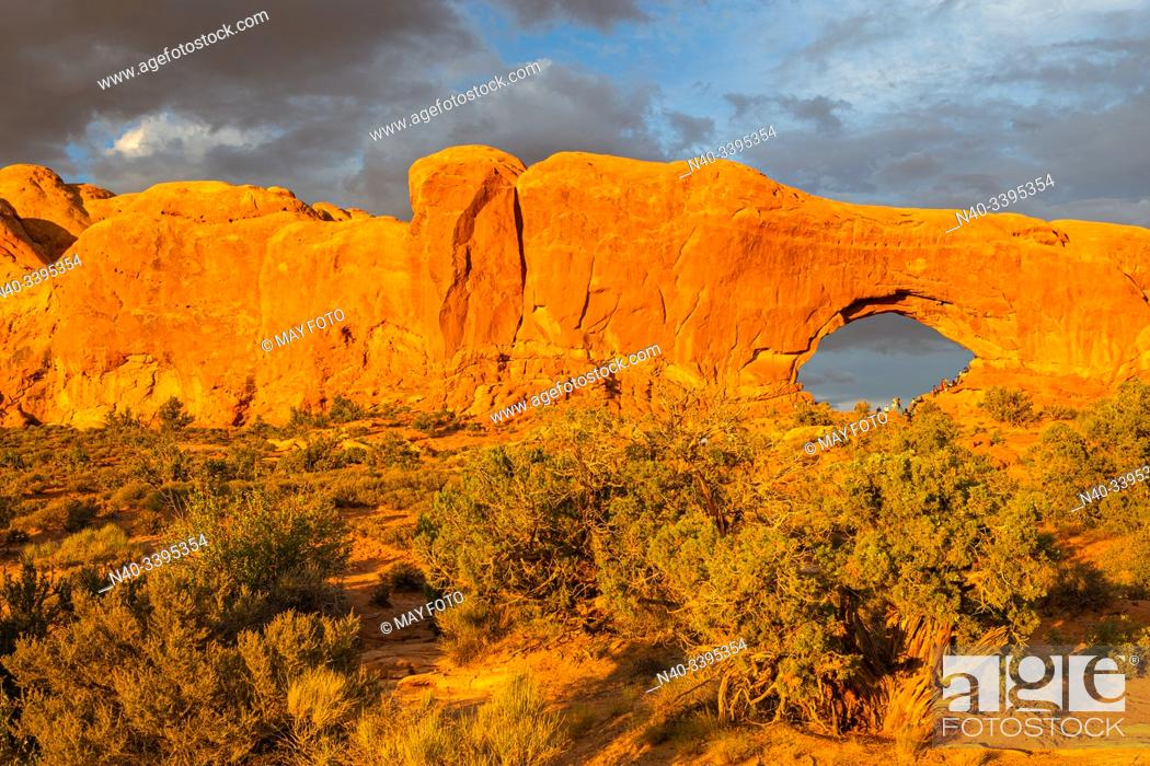 Imagen: Arches Nat. Park, Moab, Utah, United States.