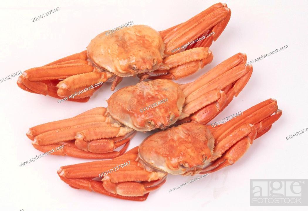 Stock Photo: Row Of King Crabs.