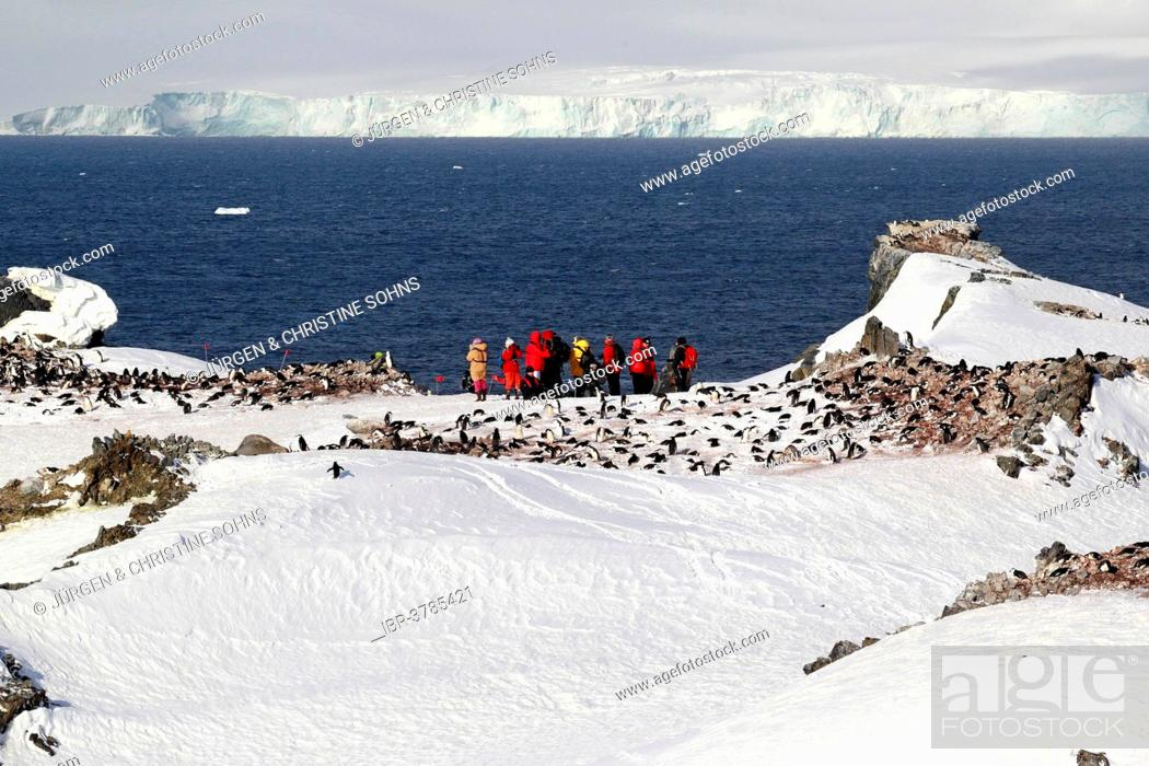 Imagen: Tourists watching a penguin colony, Devil Island, Weddell Sea, Antarctica.