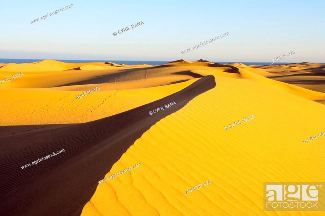 Stock Photo: Spain - Canary Islands - Gran Canaria - South Coast - Dunes of Maspalomas.