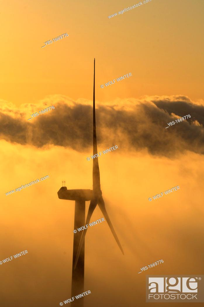 Stock Photo: Windfarm, Tortosa, Catalonia, Spain.