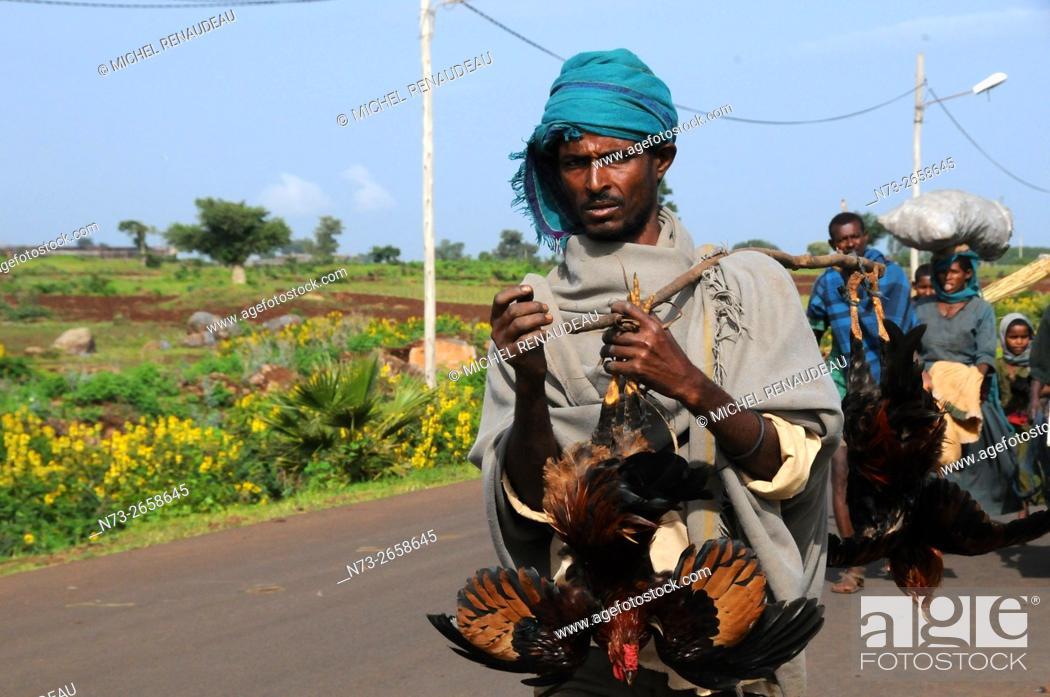 Stock Photo: Ethiopia, Amhara Region, Bahir Dar, market scene.