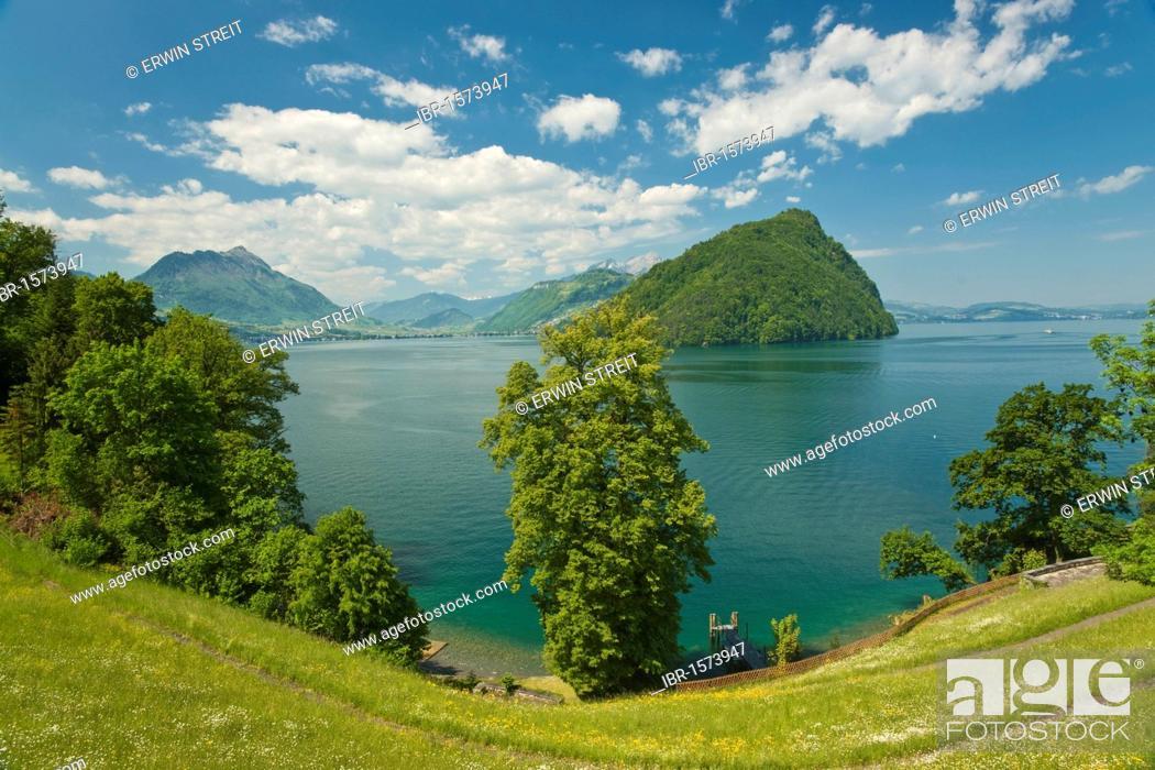 Imagen: View over Lake Lucerne on Mt. Buergenstock and Mt. Stanserhorn, Vitznau, Canton Lucerne, Switzerland, Europe.