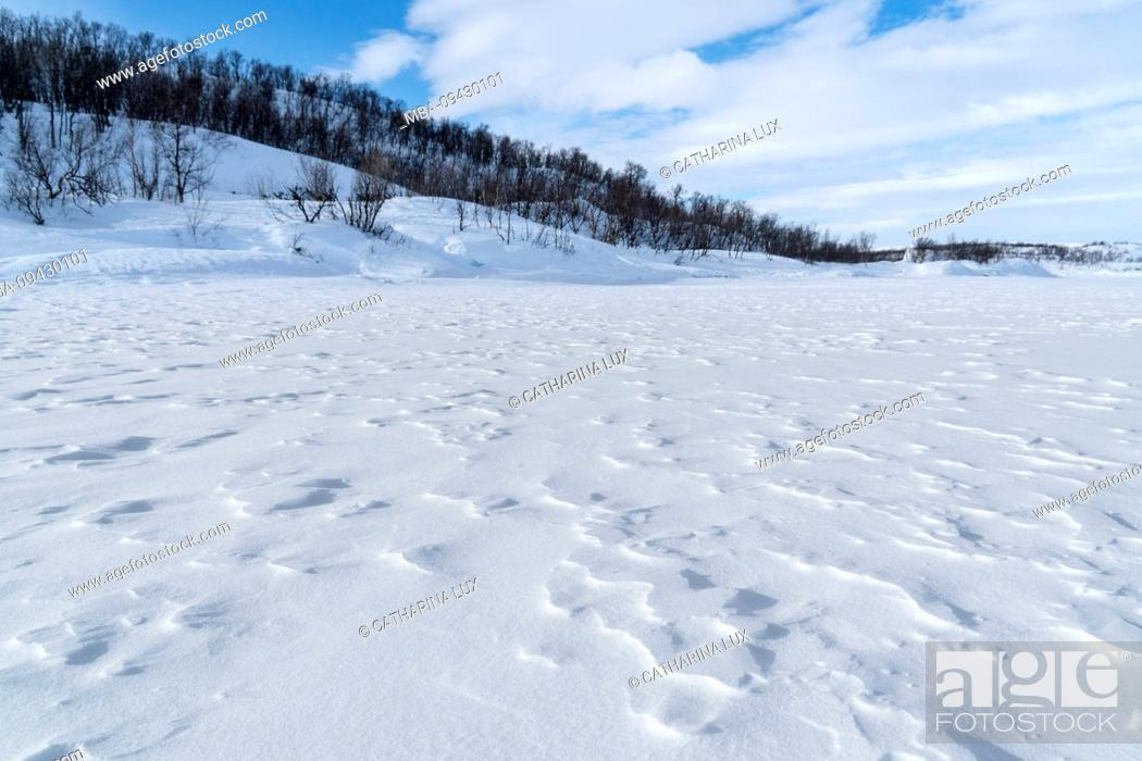 Stock Photo: Sweden, Lapland, Abisko, frozen lake (Torneträsk), structure of snow and ice.