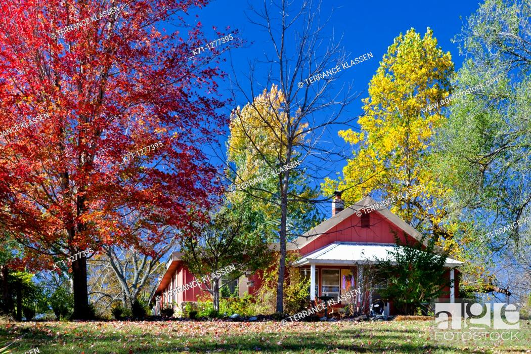 Stock Photo: A home in rural Ozarks, Missouri with fall foliage color.