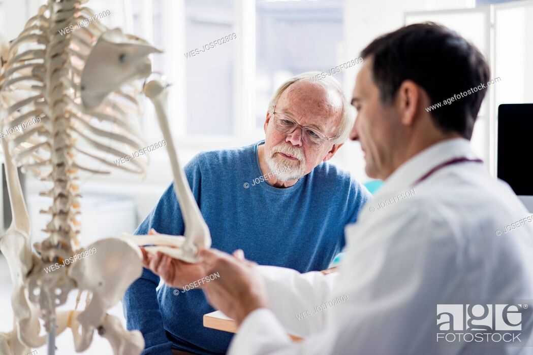 Stock Photo: Doctor explaining bones at anatomical model to patient in medical practice.
