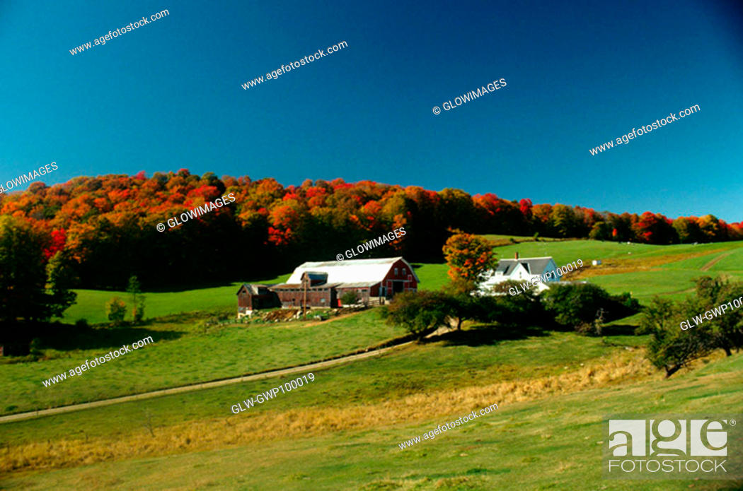 Stock Photo: Farm scene with fall foliage & clear blue sky in Caledonia county, Vermont.