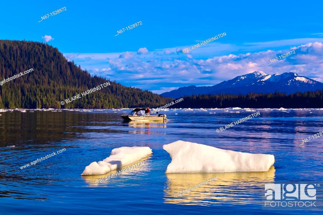 Stock Photo: Ice floes and icebergs in LeConte Bay en route from Petersburg to LeConte Glacier, southeast Alaska USA.