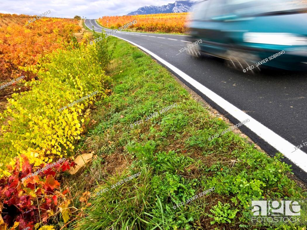 Stock Photo: Vineyards in autumn road near Laguardia - Rioja Alavesa - Euskadi - Spain.