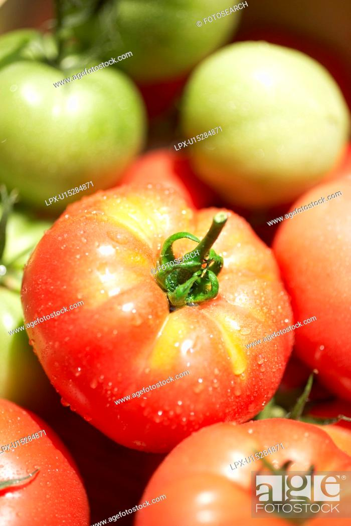 Stock Photo: Red and green tomatoes, close up.
