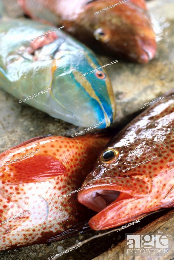 Stock Photo: fish to sell ,Grenadines Islands,Winward Islands,Lesser Antilles,Caribbean Sea.
