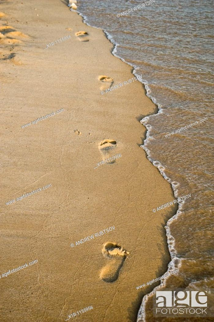 Stock Photo: Footprints in the sand.