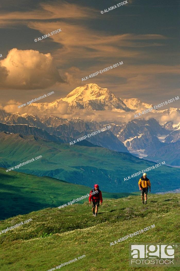 Photo de stock: Hikers on Tundra in Denali State Park SC Alaska Summer w/Mt McKinley background.