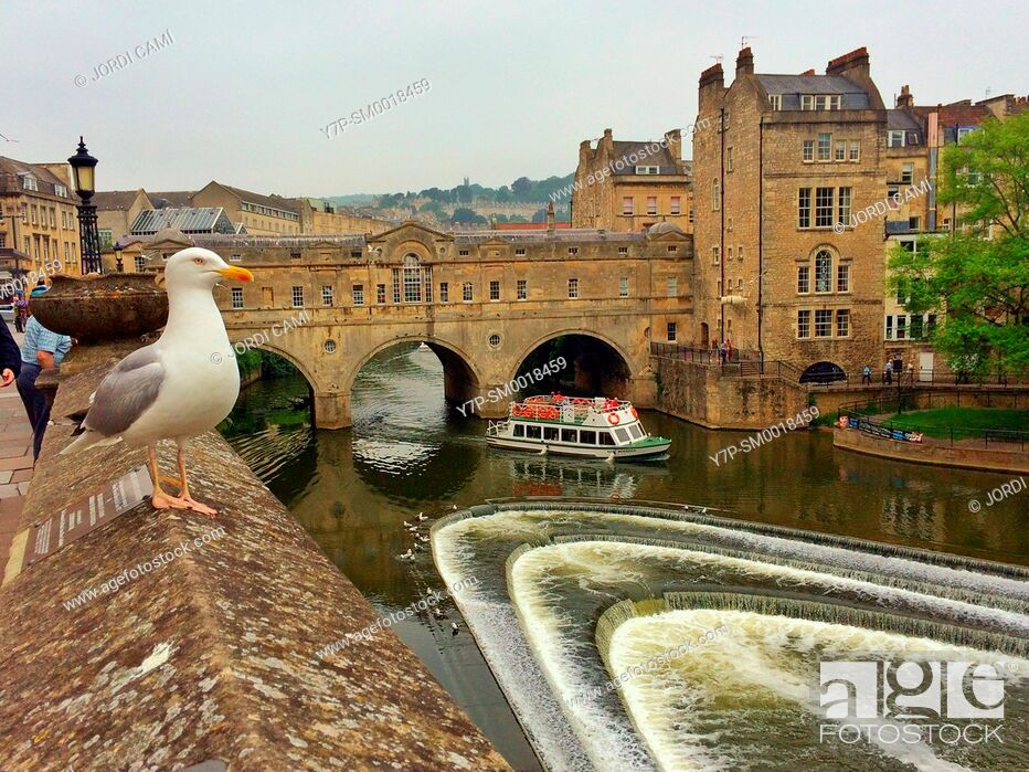 Stock Photo: Pulteney Bridge and weir on the River Avon. Bath. Somerset. England. United Kingdom.
