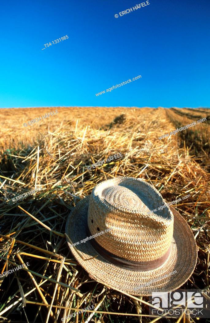 Imagen: Straw hat on a harvested grain field.