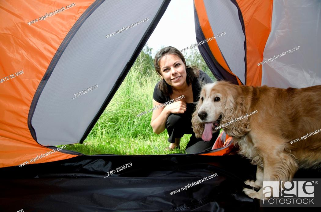 Stock Photo: Woman watching inside a tent with her cute cocker spaniel dog in Ticino, Switzerland.