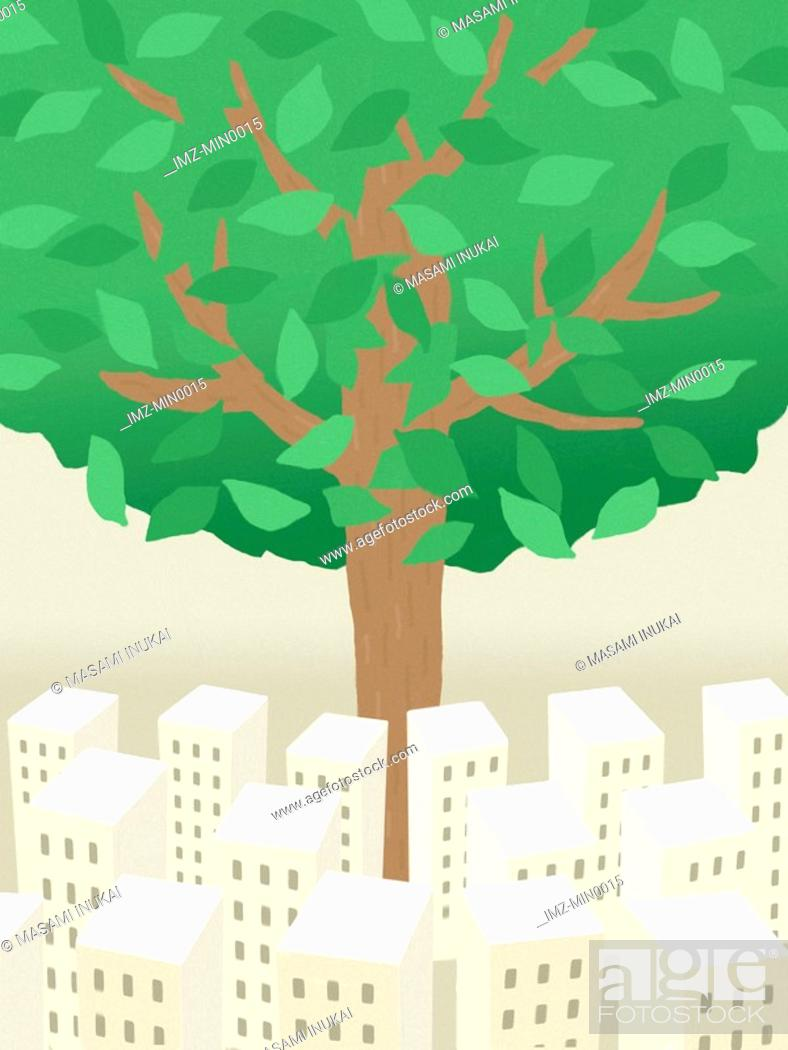 Stock Photo: A large tree growing tall from within a city.