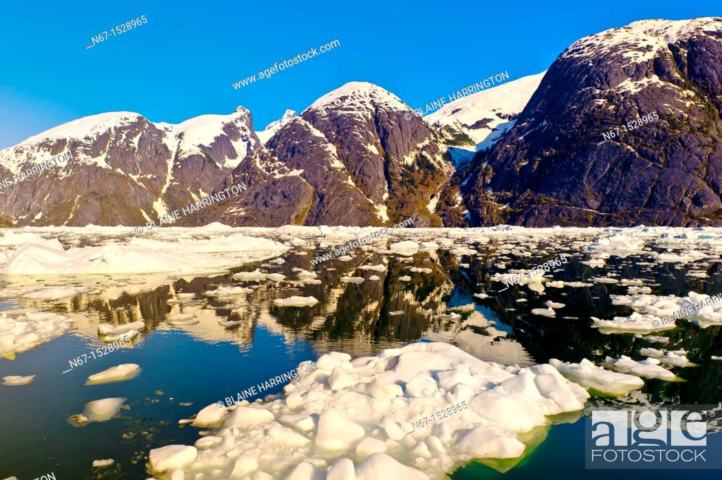 Stock Photo: Icebergs and ice floes, LeConte Bay near LeConte Glacier, between Petersburg and Wrangell, southeast Alaska USA.