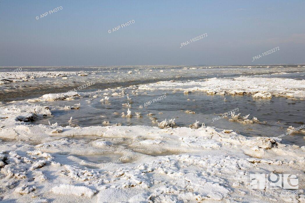 Imagen: Noord Friesland Buitendijks, Noorderleeg, Noard Fryslën B×tendyks, Noarderleech, Marrum, Ferwerderadeel, Ferwerderadiel, Frisia, The Netherlands, Holland.