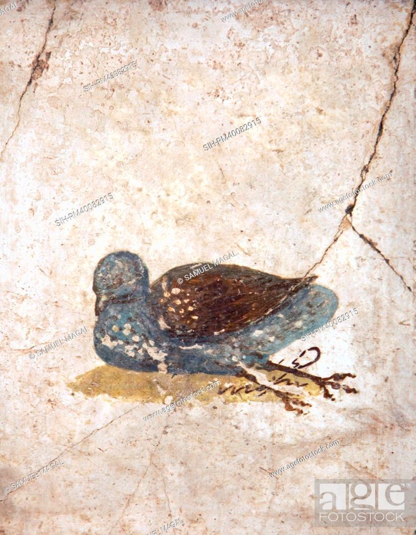 Stock Photo: Italy, Naples, Naples National Archeological Museum, Stabiae, Villa of Arianna 15, Birds.