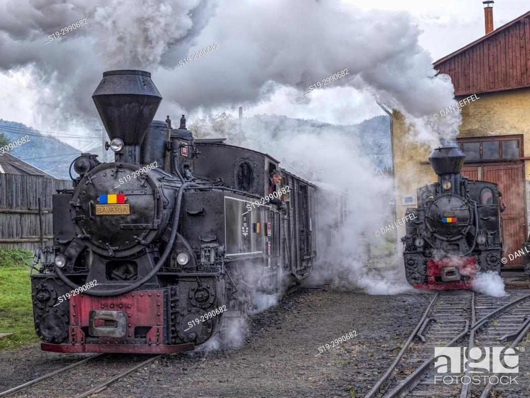 Stock Photo: Carpathian Forest Steam Train. Romania.