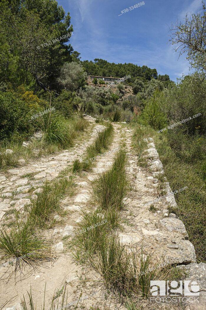 Imagen: cami Vell de Estellencs, Puigpunyent, Mallorca, Balearic Islands, Spain.