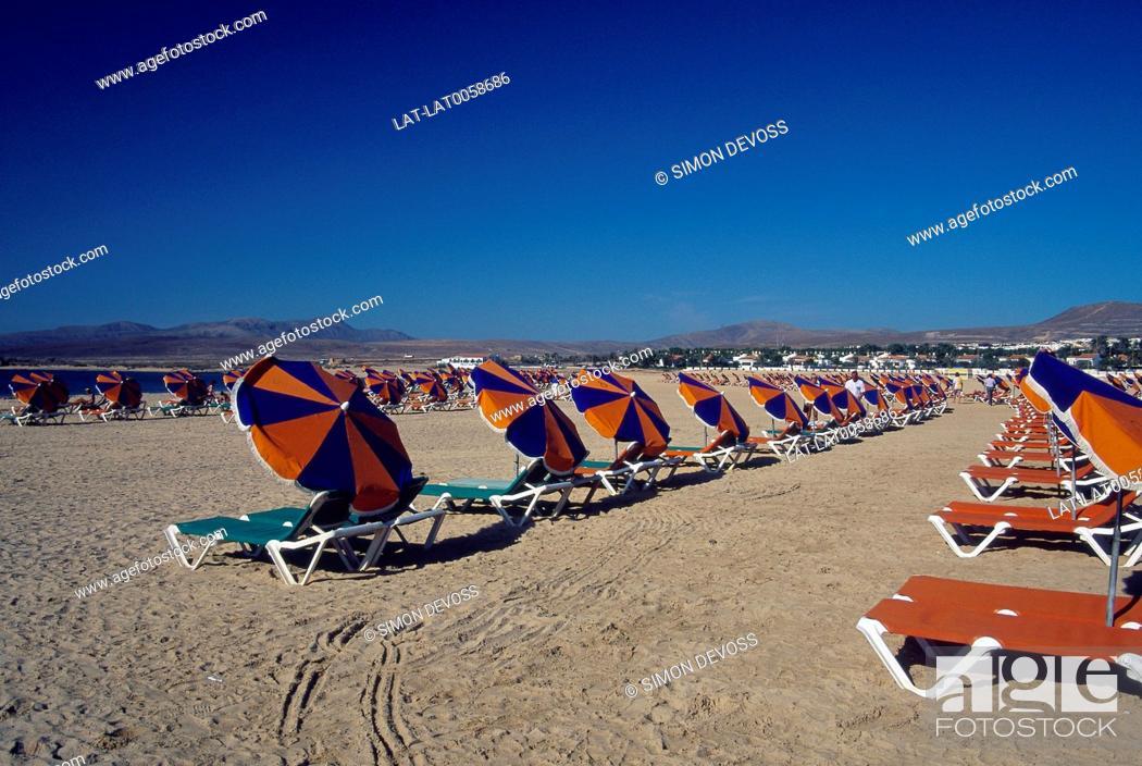 Caleta De Fuste Rows Of Sunbeds With Umbrellas On Beach