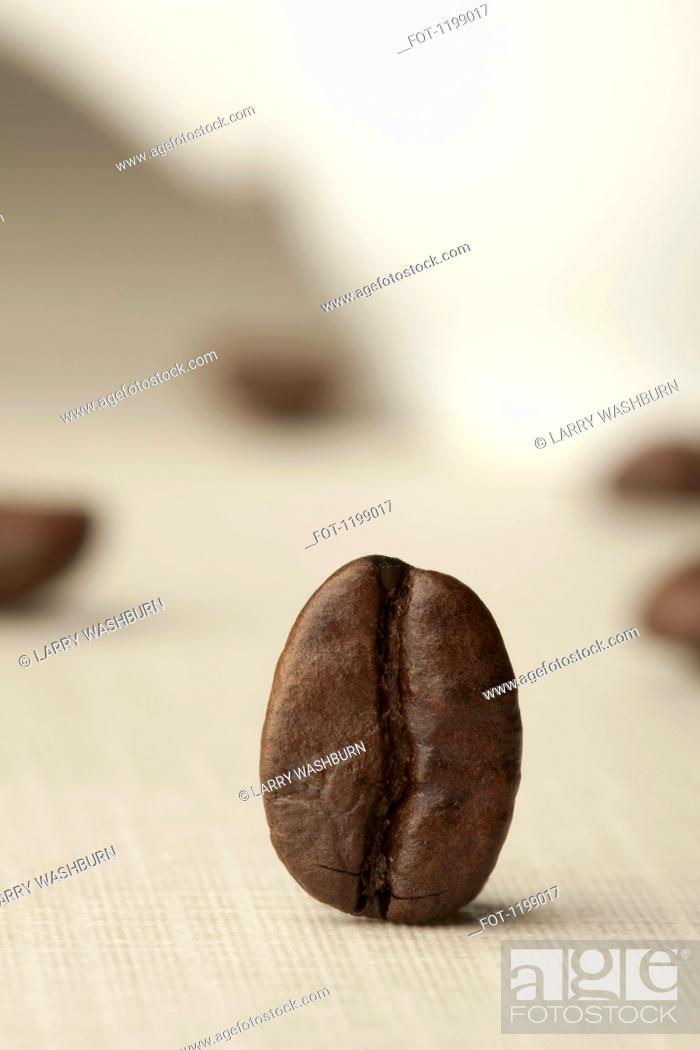 Stock Photo: A coffee bean.