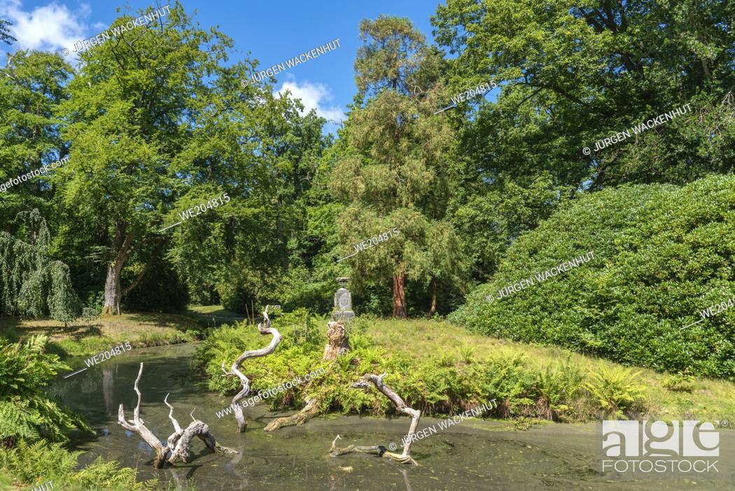 Imagen: Landscape Garden and Castle Park of Lütetsburg Castle, Lütetsburg, Lower Saxony, Germany, Europe.