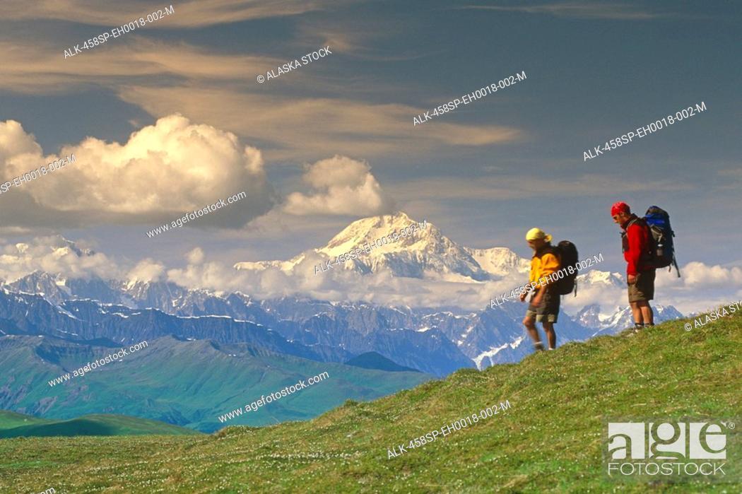 Photo de stock: Hikers on Tundra in Denali State Park SC Alaska Summer w/Mt McKinley background.