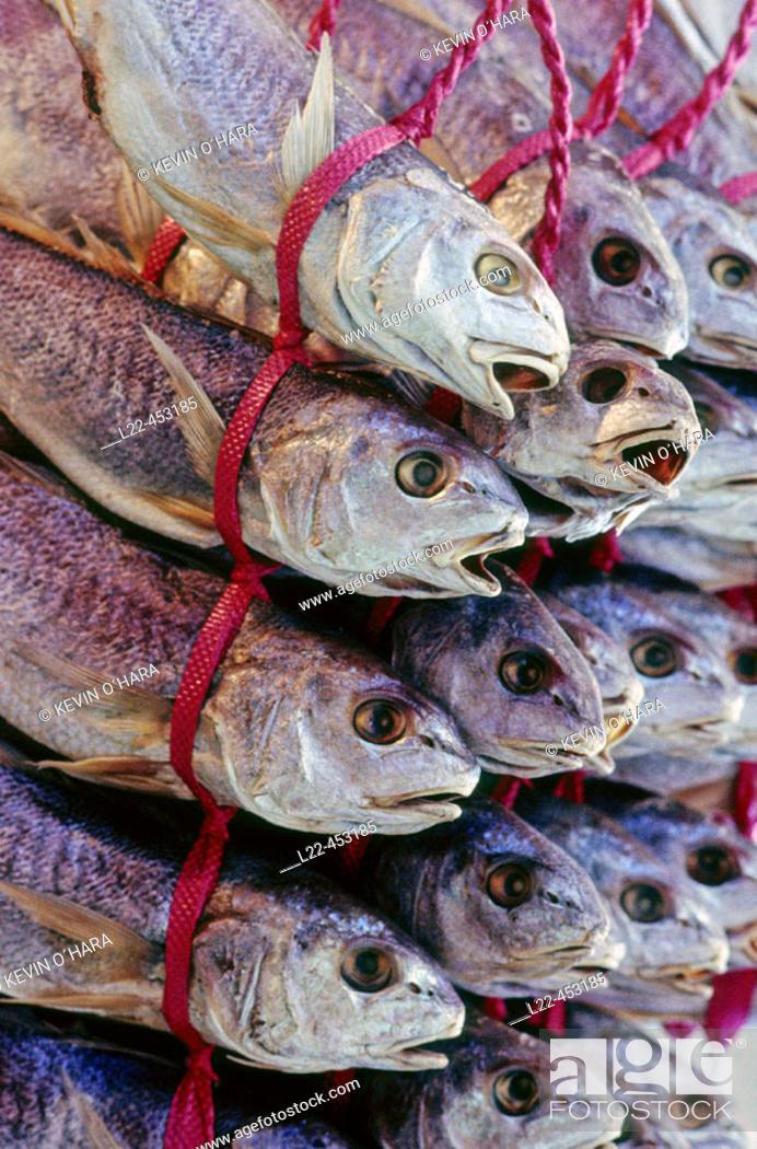 Stock Photo: Pusan's huge fish market. Pusan is Korea's principal port and the second largest city. Republic of Korea. Asia.