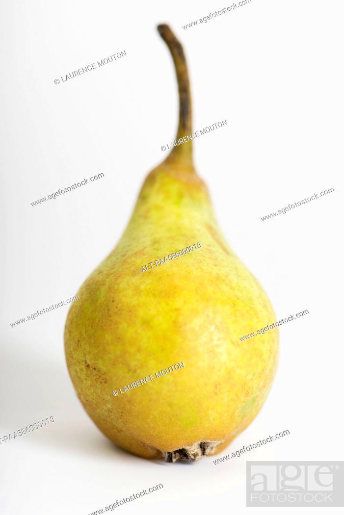 Stock Photo: Pear.