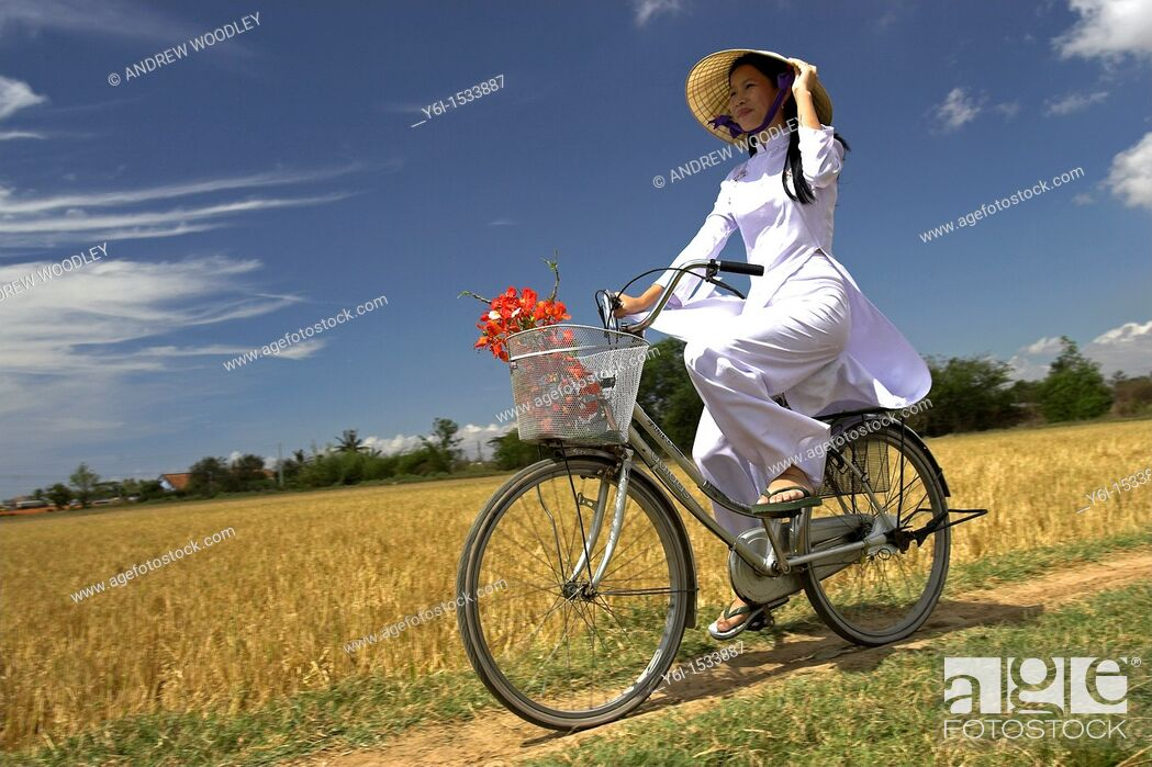 Stock Photo: Young woman in conical hat and traditional white ao dai costume rides bicycle in rice fields near Phan Thiet south east Vietnam.