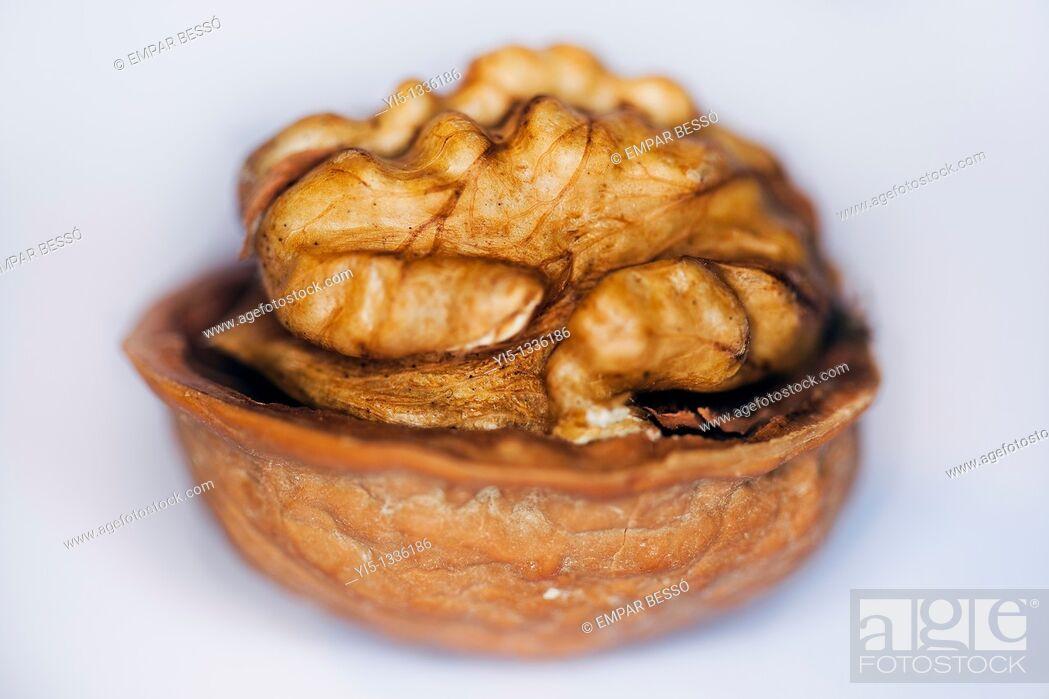 Stock Photo: Walnut close-up.
